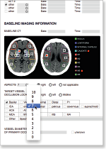 aycan workstation brain vessel report