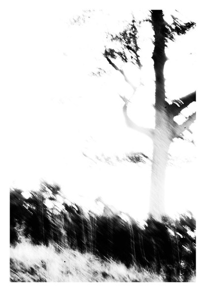 A Year In The Country-Artifact #6:52-print image