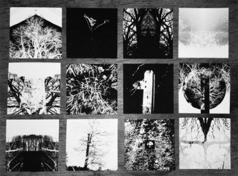 Artifact 28-A Pastoral Tinderbox-all prints-A Year In The Country