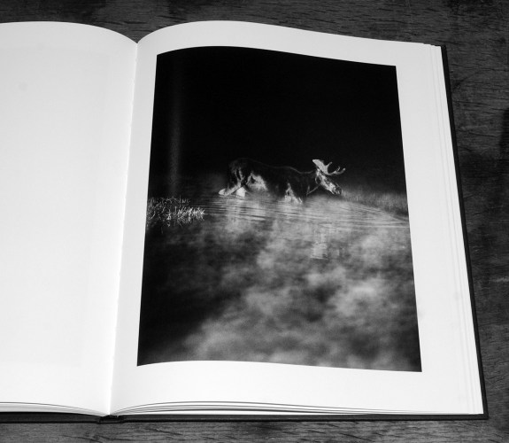 George Shiras-In The Heart Of The Dark Night-Éditions Xavier Barral-A Year In The Country-4