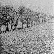 Lucy Reid-Textile artist-2