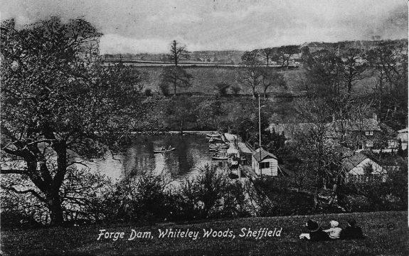 Forge Dam-Sheffield-Pulp-The Wicker Man-1