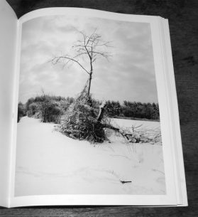 The Meadow-Barbara Bosworth-Margot Anne Kelley-Radius Books-3