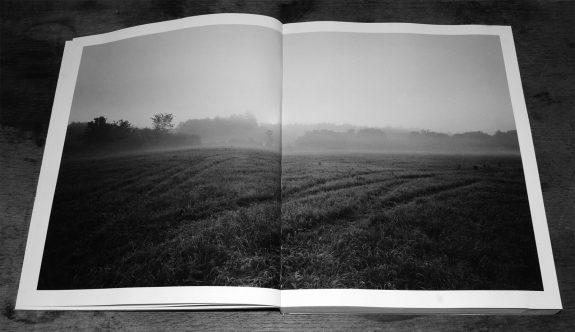 The Meadow-Barbara Bosworth-Margot Anne Kelley-Radius Books-5