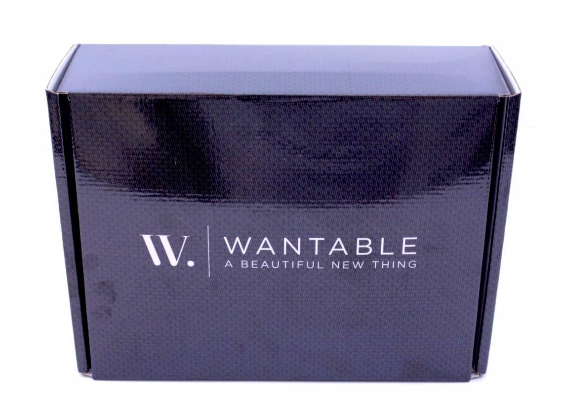 Wantable Intimates January 2016 5