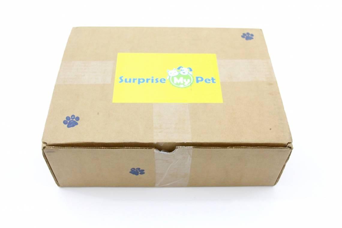 Surprise My Pet April 2016 1