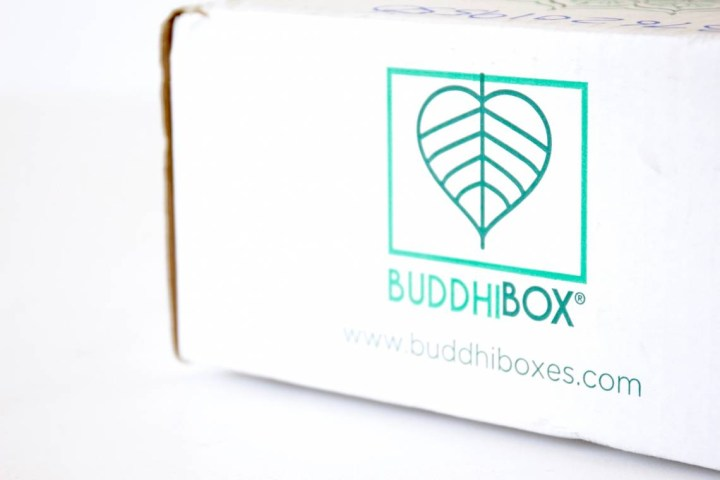 BuddhiBox Review June 2016 1