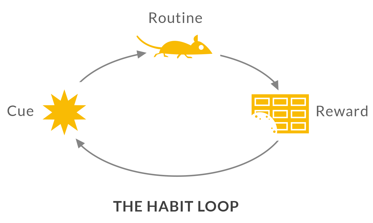 How To Break Bad Habits And Form Good Habits