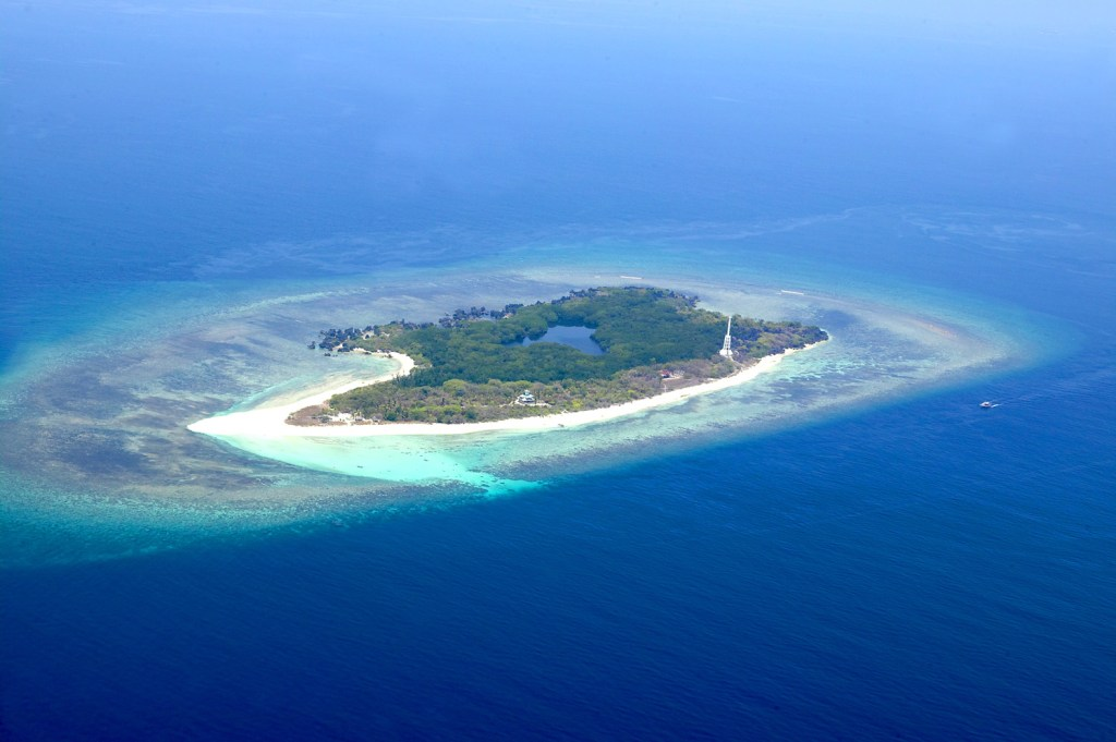 Apo Reef in Focus: The Boon and Bane of the Pandemic