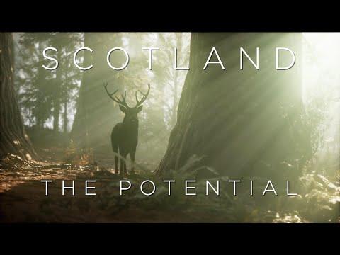SCOTLAND The Potential