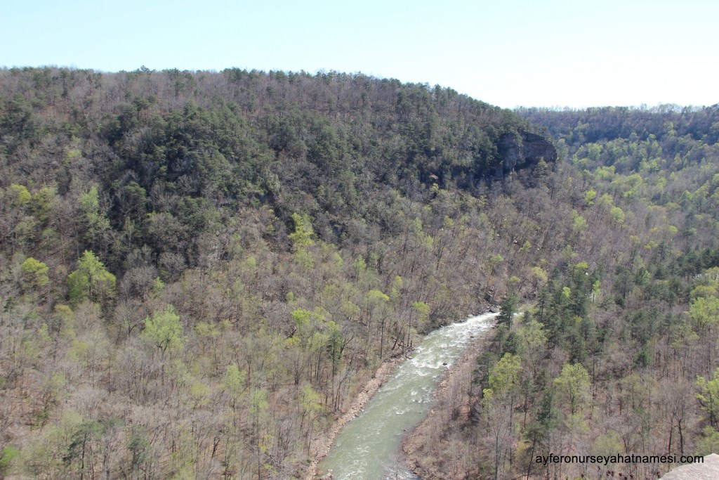 Little River Canyon - Alabama State Parks