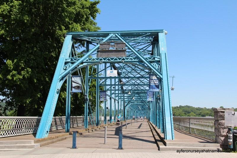 Araç trafiğine kapalı Walnut Köprüsü