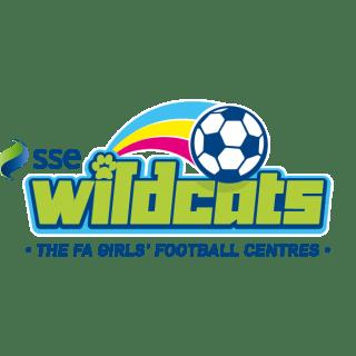 https://i0.wp.com/aylesfordfc.co.uk/wp-content/uploads/SSE-Wildcats-Logo_PNG.png?resize=320%2C320&ssl=1