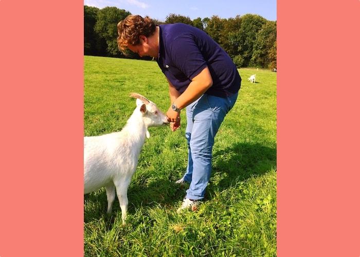 Jan voert geit op geitenboerderij