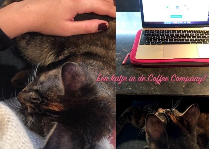 Katje in de Coffee Company