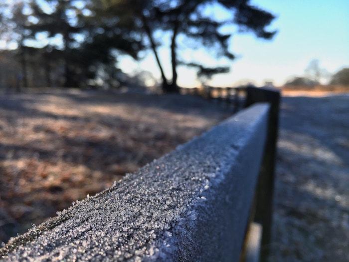 Bevroren hek op de hei