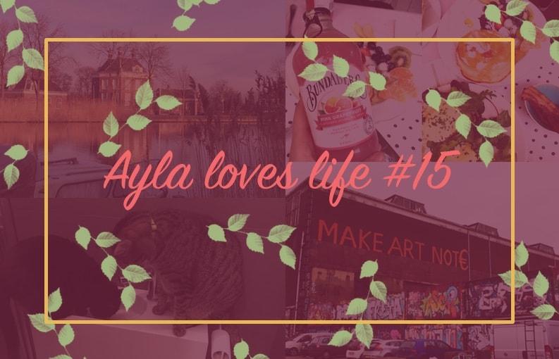 Ayla loves life #15; katjes, bloggen en hotspots