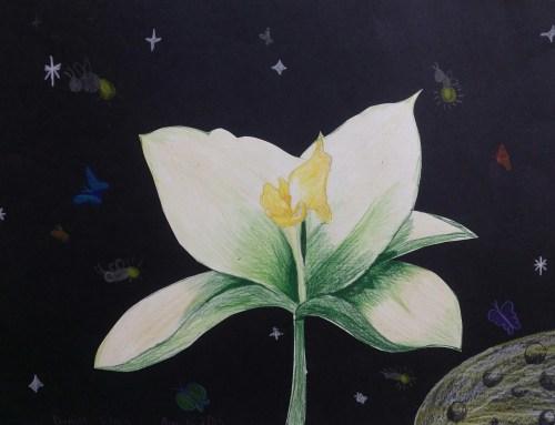 AYLUS_Art_Blooming_Flower