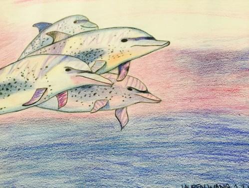 AYLUS_Art_Dolphins