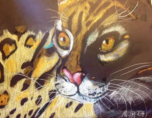 AYLUS_Art_Lonly_Leopard