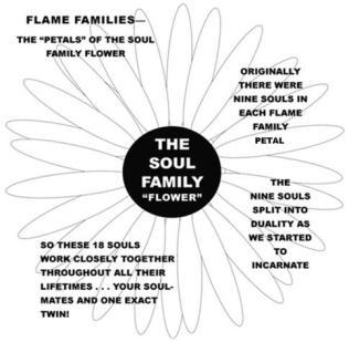 soul family flower