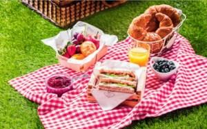 Makanan Yang Harus Dibawa Saat Piknik