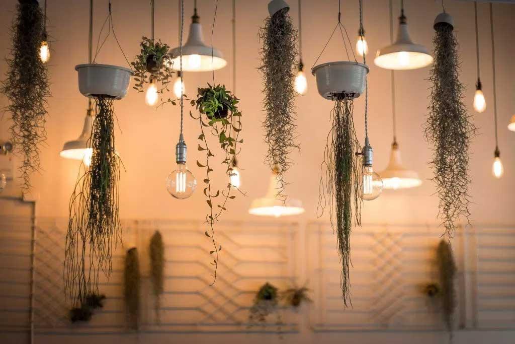 Keunggulan Lampu Neon LED untuk Penerangan Rumah
