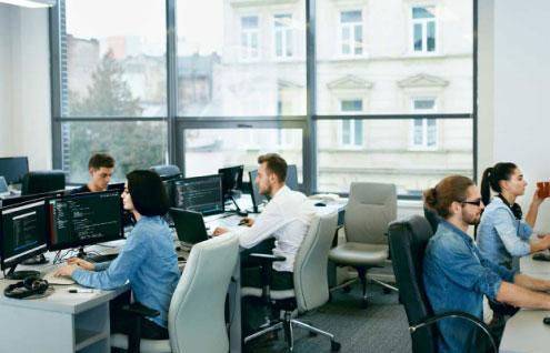 Ayoka Custom Software Development