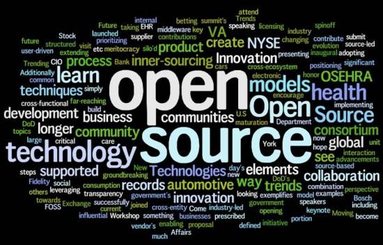software-audit