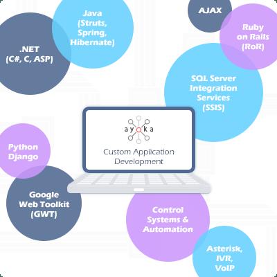 custom application development possibilities