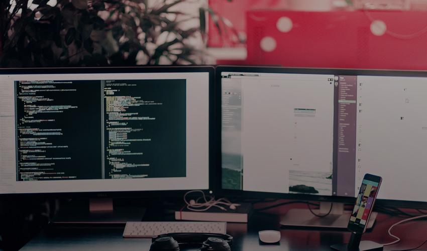 Python Gains Momentum