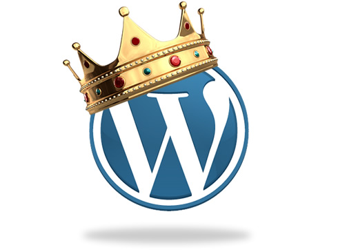 custom wordpress designer