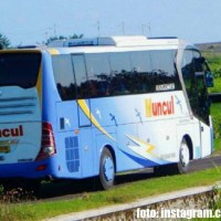 Bus PO Muncul | foto: instagram.com/adityalukman66