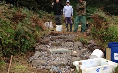 Improved path at Drumbain