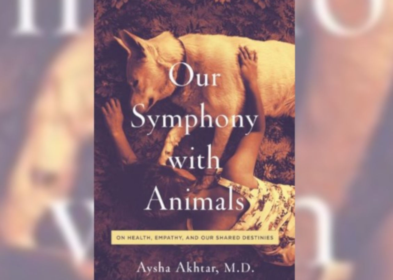 Our Symphony With Animals is a Top Pick on Barnes and Noble's readouts: