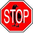 paloma-stop.png - 68.30 KB