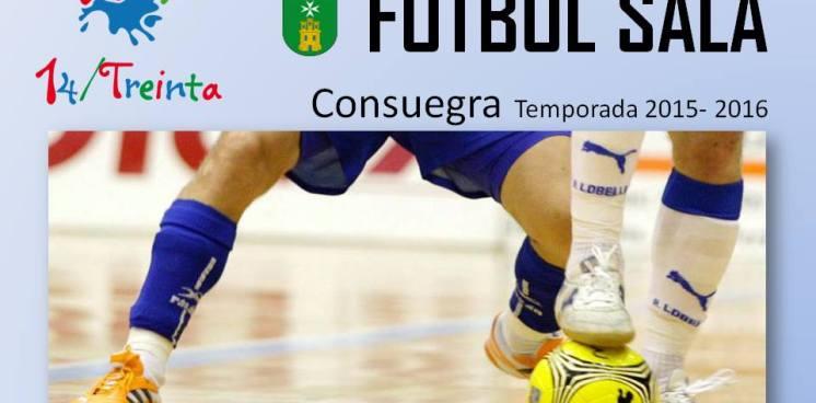 liga-futbol-sala2015-2016.jpg - 73.66 KB