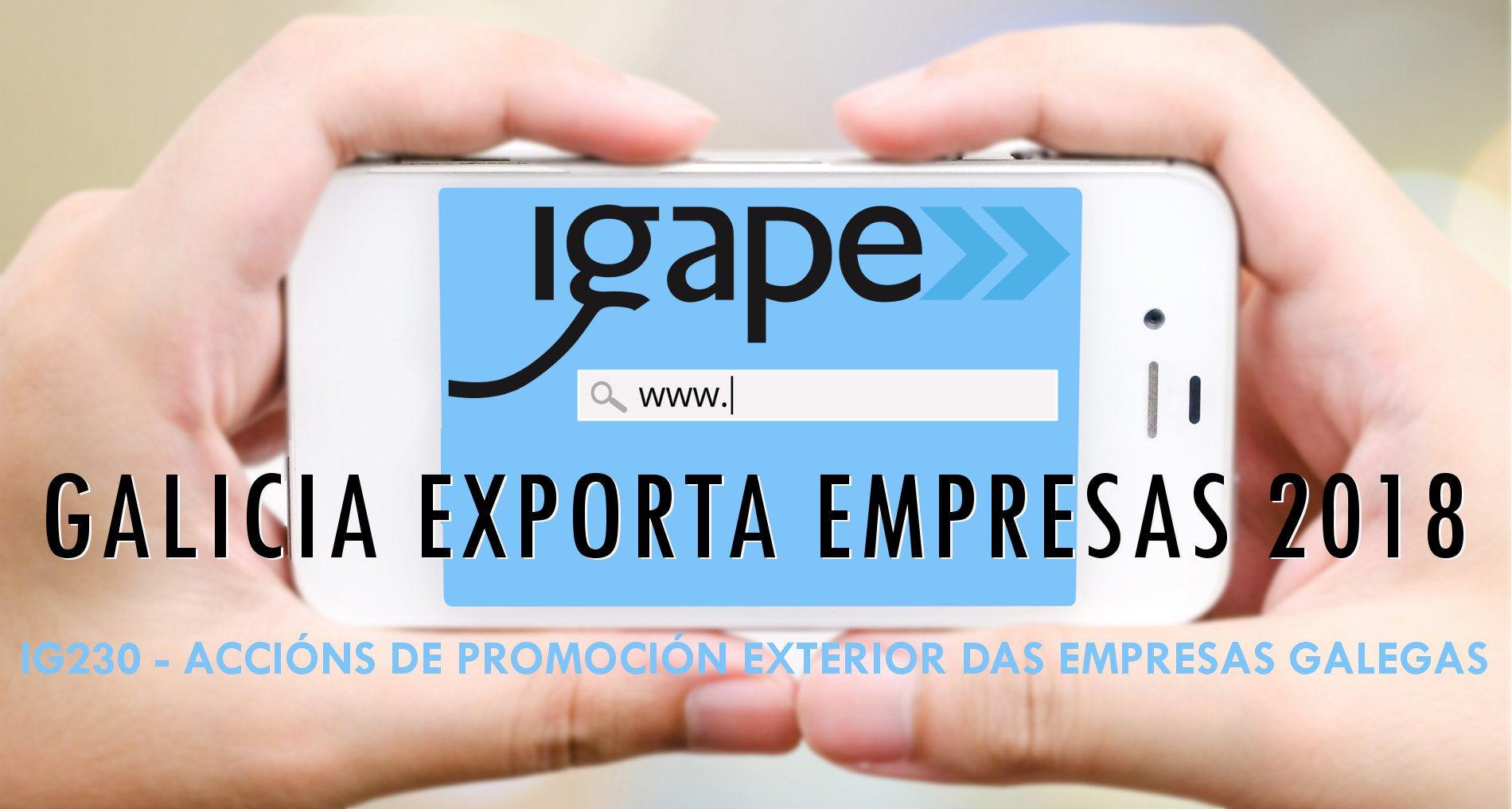 Ayudas a acciones de promoción exterior de las empresas gallegas