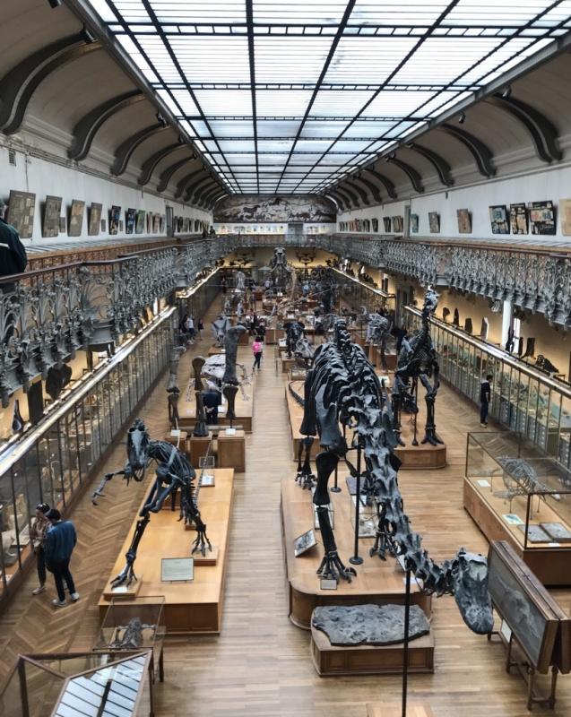 パリ自然史博物館