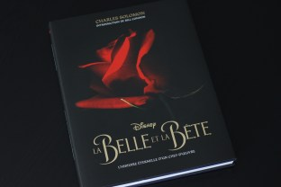 livre beauty and the beast (1)