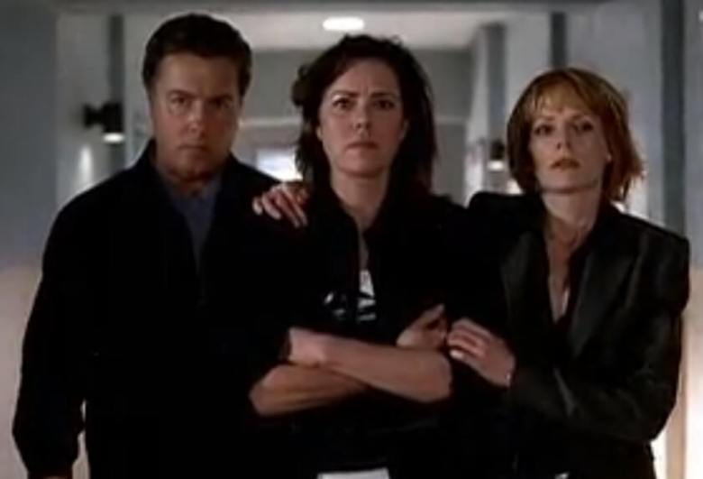 Last scene of CSI 'Gentle, Gentle'. CSI Grissom and CSI Catherine gave Mrs. Anderson strenght to face the Media.