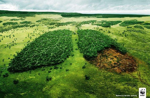 Iklan Layanan Masyarakat Paling Mengena - Iklan-tentang-kelestarian-hutan