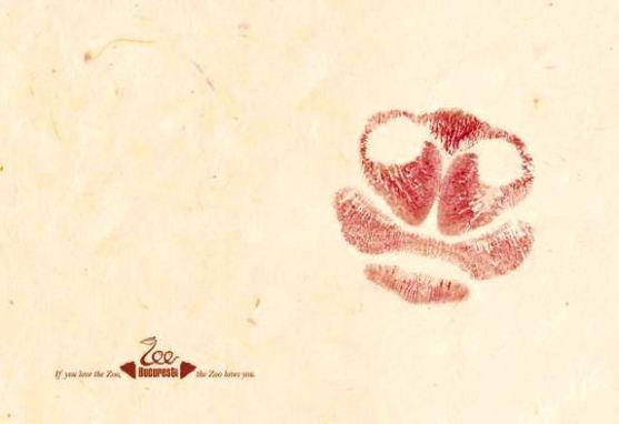 Contoh Format Iklan Advertising dengan Desain Minimalis - Contoh-38-Desain-Iklan-Minimalis-Zoo-Bucuresti