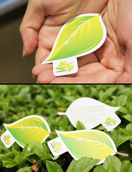 Business Card Green Leaf