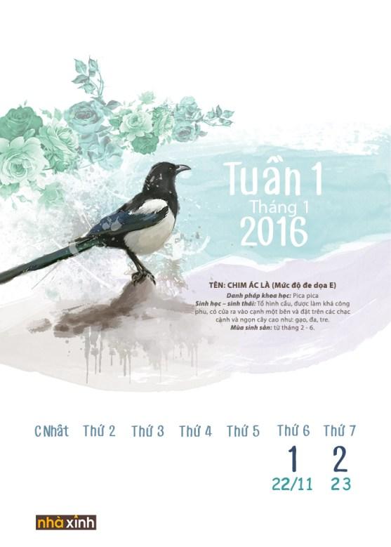2016 Calendar- List Of Vietnamese Extinct Birds