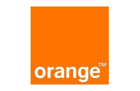 Penggunaan Warna yang Sukses dalam Branding - 02-orange