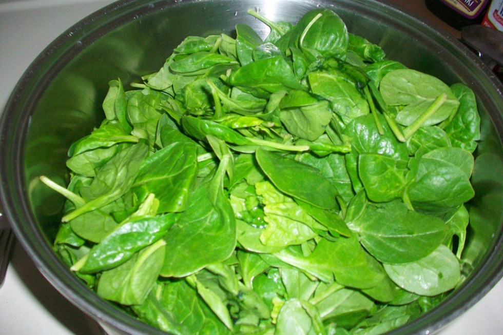 Spinach Image source -- https://www.flickr.com/photos/21198715@N07/4695476023/sizes/l