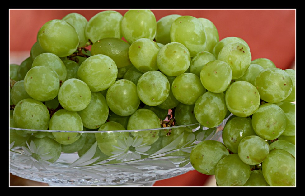 Green Grapes Image source -- https://www.flickr.com/photos/40685807@N08/6185638145/sizes/l