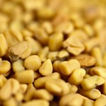 Amazing Benefits of Fenugreek Seeds