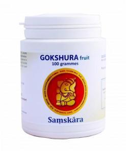 Gokshura régénérant pour les reins